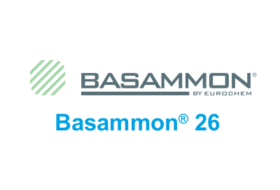 Basammon 26
